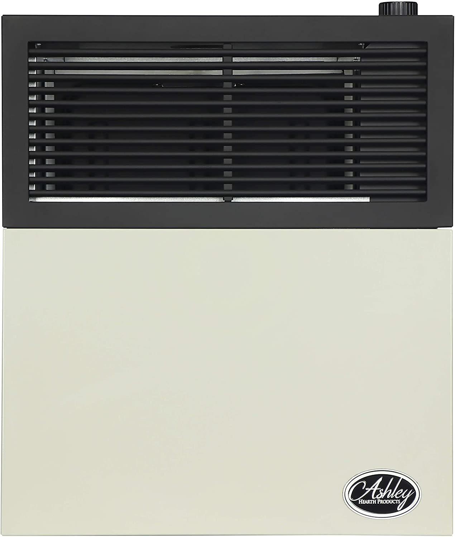 Ashley Hearth DVAG11L Direct Vent Propane Heater